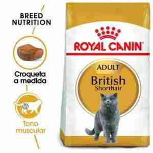 royal canin british